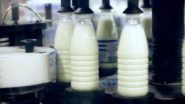 Botellas de leche en la fábrica del alimento de la marca. Industria láctea. Planta de alimentos. Fábrica de leche - vídeo