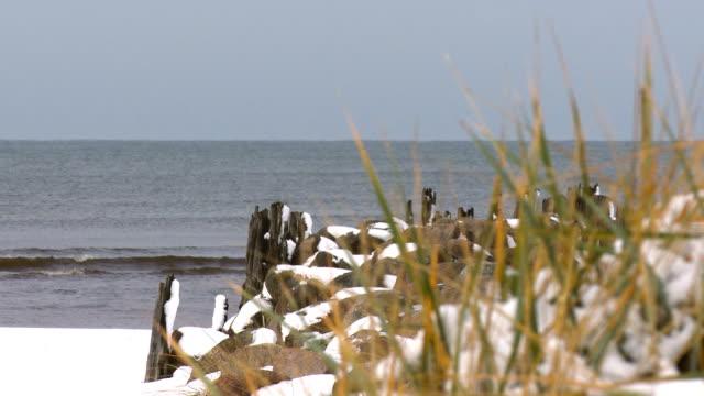 vídeos de stock, filmes e b-roll de grama do marram cobertas de neve outono / inverno na costa do mar báltico - países bálticos
