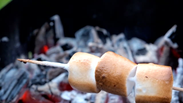 Marshmallow on skewers is fried at the stake. Toasted marshmallows open flame on skewer Marshmallow turning a pike by the heat of a dying camp fire embers marshmallow stock videos & royalty-free footage