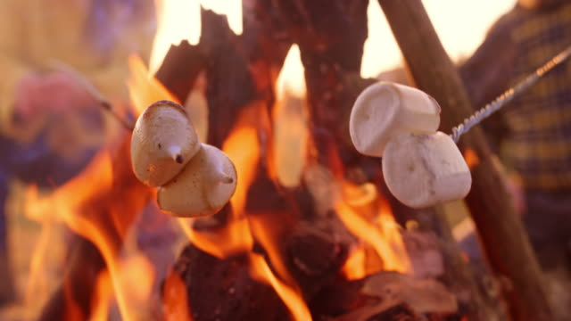 SLO MO Marshmallows melting while being roasted over the campfire Slow motion close up handheld shot of marshmallows starting to melt on the skewers while roasted over the campfire. Shot in Slovenia. marshmallow stock videos & royalty-free footage