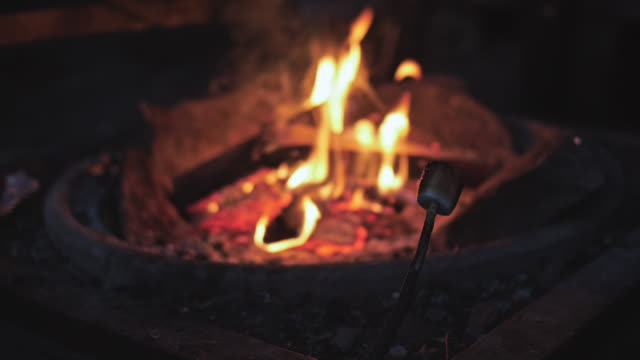 Marshmallows on stick roasting over ember fire Late evening outdoors marshmallow stock videos & royalty-free footage