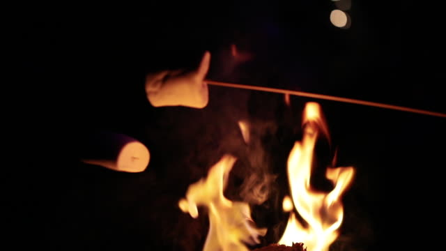Marshmallows Over Fire Toasting some marshmallows over the fire. marshmallow stock videos & royalty-free footage