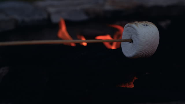 Marshmellow Roasting on Stick in Camp Fire Pit Cooking treat in camping flames on family vacation marshmallow stock videos & royalty-free footage