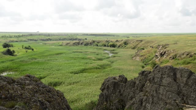 Marshy river with rocky shores video