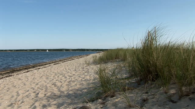 Martha's vineyard quiet beach and countryside video