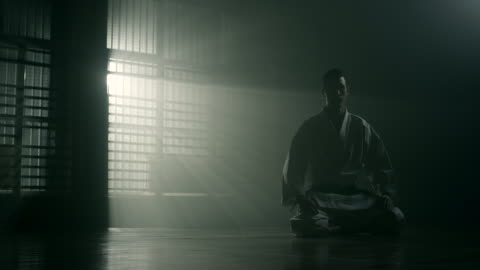vidéos et rushes de concentration en arts martiaux - arts martiaux