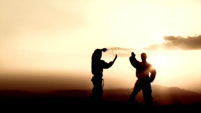 gru hd: arti marziali al tramonto - sparring allenamento video stock e b–roll