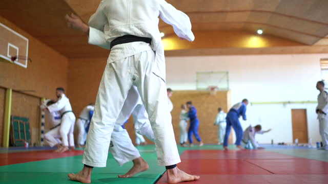 Martial arts fighters training together video