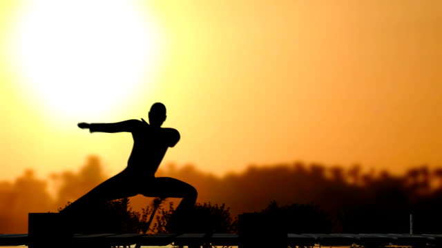 (HD1080) Martial Arts Performer, in front of Sun video
