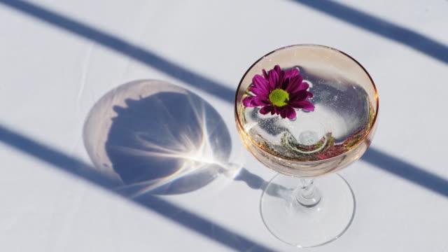 stockvideo's en b-roll-footage met martini in een cocktailglas bij een luxe, elegante picknicklijst in de zonneschijn op een de zomerdag - sluit omhoog - martiniglas