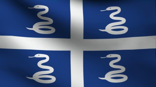 Martinique flag.