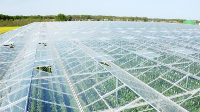 stockvideo's en b-roll-footage met antenne massieve kas voor het kweken van tomaat naast een snelweg - glass house