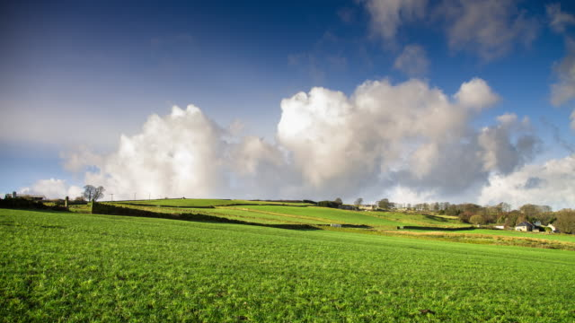 Massive White Clouds Blowing Over Green Fields - Time Lapse video