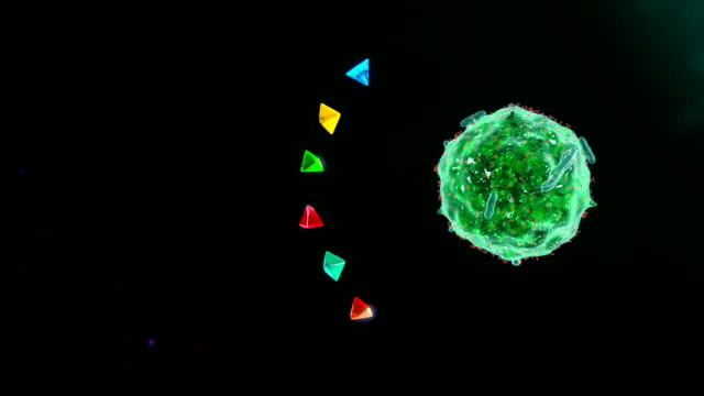 Mast cell video
