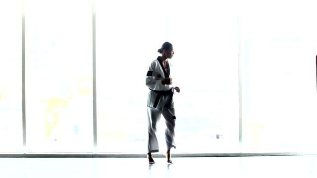 マスター ブラック ベルト テコンドー女教師多くポーズでウォーム アップ、窓表示シルエット図 ビデオ