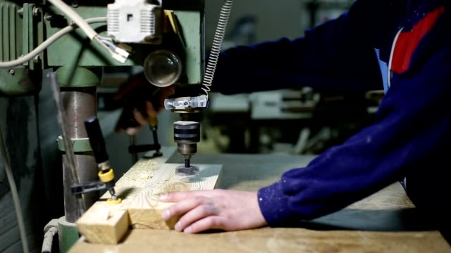 Master drilling holes with wood cutter in board video