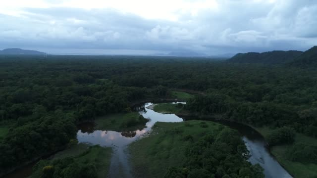 Mata Atlantica - Atlantic Forest in Brazil Drone Footage amazon stock videos & royalty-free footage