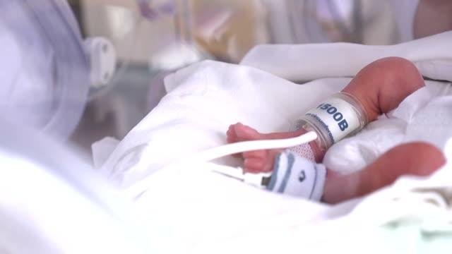 vídeos de stock, filmes e b-roll de centro de maternidade. recém-nascido gravemente doente na incubadora, terapia intensiva hospitalar: ccu, uti, itu. a criança pequena do bebê move seus dedos, pé e perna vigorosamente. feche acima - novo bebê
