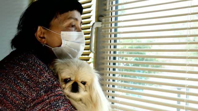 Mature adult brunette woman caucasian ethnicity, with his little white pekingese dog.