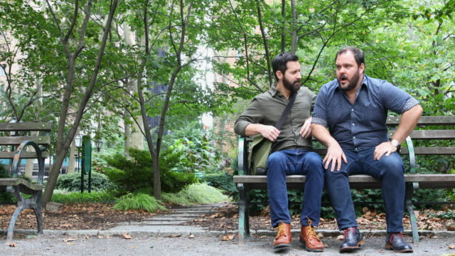 Mature Adult Gay Men Relaxing in a New York Park video