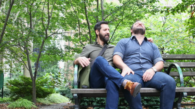 Mature Adult Gay Men Relaxing in a New York Park Mature adult gay men relaxing outdoors in a New York park gay man stock videos & royalty-free footage