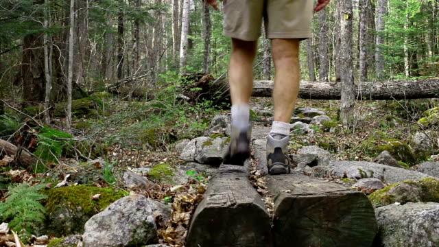 adulto in età matura scarpa da hiking - pantaloncini video stock e b–roll