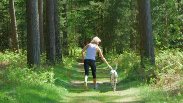 Eine reife erwachsene Frau pisst ihren Hund, wie sie gemeinsam durch einen Wald läuft. – Video
