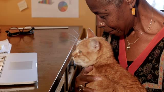 gammal afroamerikansk kvinna klappa sin orange katt i hennes hemmakontor - katt inomhus bildbanksvideor och videomaterial från bakom kulisserna