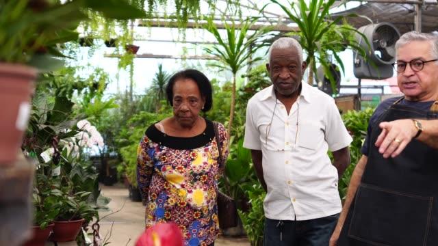 mature african couple customer buying at flower market - латинская америка стоковые видео и кадры b-roll