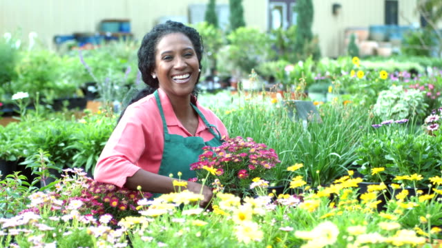 mature african-american woman working in plant nursery - semenzaio video stock e b–roll