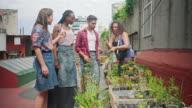 istock Mature Hispanic Gardener Educating Young Community Members 1199303880