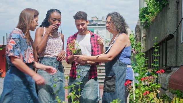 reife hispanische gärtner erziehung junge gemeinschaft mitglieder - urban gardening stock-videos und b-roll-filmmaterial