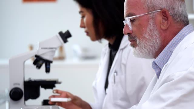 vídeos de stock, filmes e b-roll de cientista masculino maduro que usa o portátil no laboratório - amostra científica