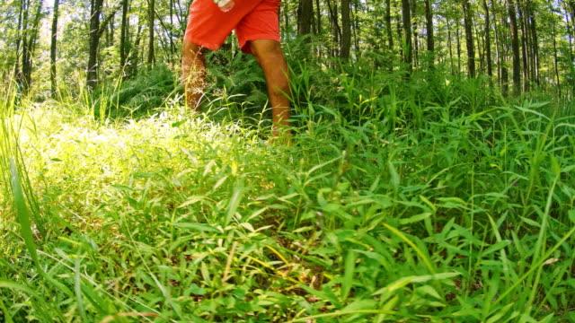 uomo maturo che cammina su un sentiero nella foresta di poconos, pennsylvania, usa nella calda giornata estiva soleggiata. - hickory run video stock e b–roll