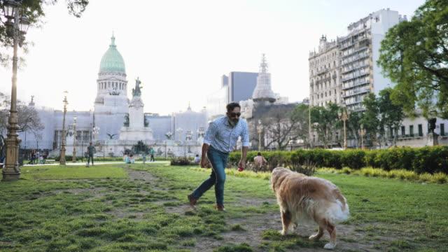 reife mann mit goldenen retriever hund zu fuß im park im sonnenuntergang - hundesitter stock-videos und b-roll-filmmaterial