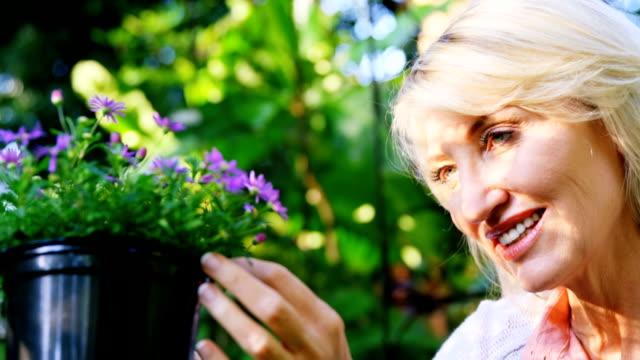 mature woman checking plant - 50 54 lata filmów i materiałów b-roll