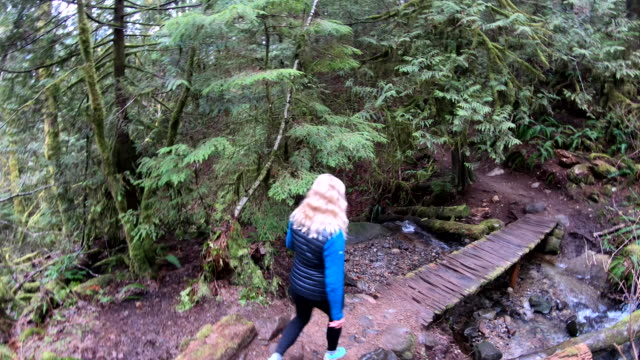 Mature woman follows forest trail, along boardwalk
