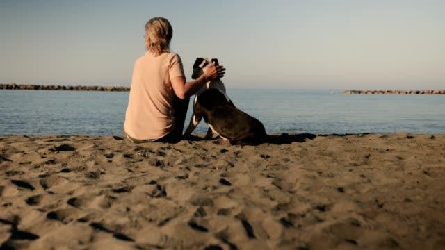 reife frau entspannen am strand mit hund - hundesitter stock-videos und b-roll-filmmaterial