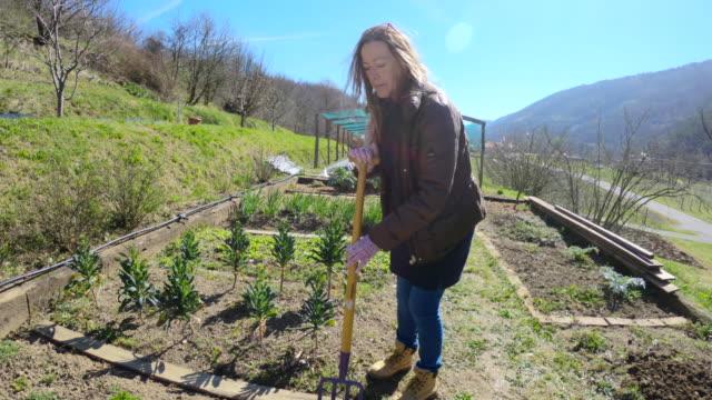 Mature Woman Using Gardening Fork Mature Woman Gardening Using Gardening Fork. less than 10 seconds stock videos & royalty-free footage