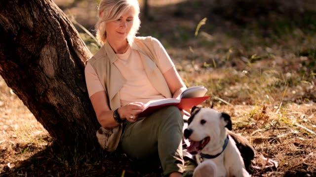 mogen kvinna med hund sitter under träd och läsa bok - hund skog bildbanksvideor och videomaterial från bakom kulisserna