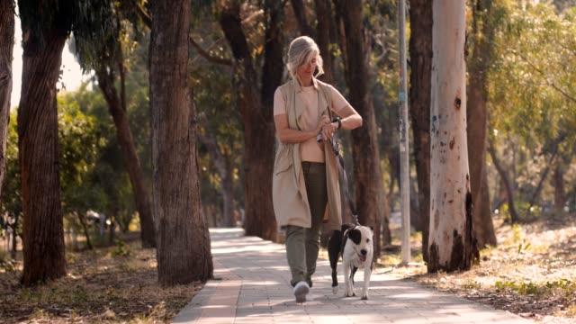 mogen kvinna med smartwatch promenader hund och kontrollera utövandet framsteg - senior walking bildbanksvideor och videomaterial från bakom kulisserna