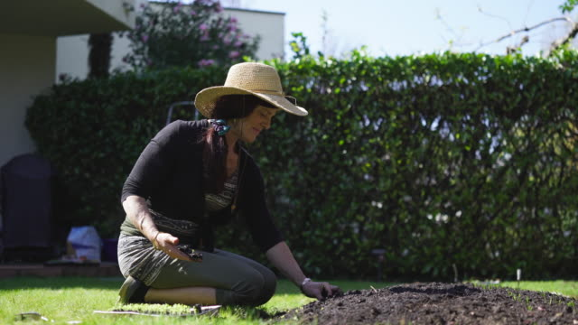 Mature woman working in garden at home, planting vegetables, fruit and seedlings Moments at home with mature couple living at home, working on garden, using technology. pedal pushers stock videos & royalty-free footage