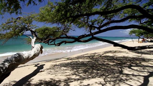 Maui Hawaii Olowalu Beach video