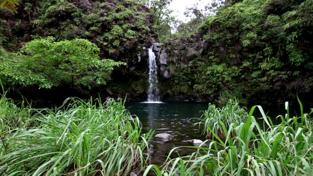 Maui Hawaii Pua' a Ka' a State Park Waterfall Center.mov video