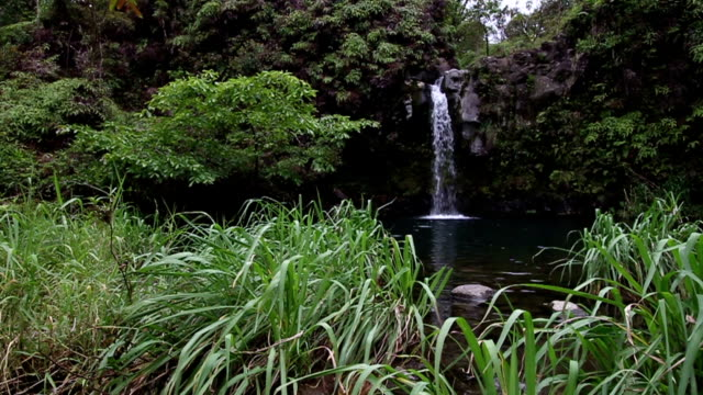 Maui Hawaii Pua' a Ka' a State Park Waterfall Right video