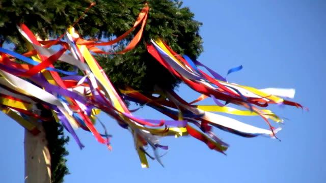 vídeos y material grabado en eventos de stock de puede árbol - día del trabajo