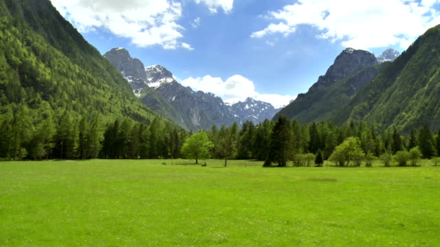 WS AERIAL Meadow With Mountains In Background video
