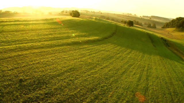 AERIAL Meadows In The Late Afternoon Sun video