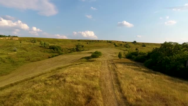 meadows with hills and forest with a bird's eye view. - paesaggio collinare video stock e b–roll