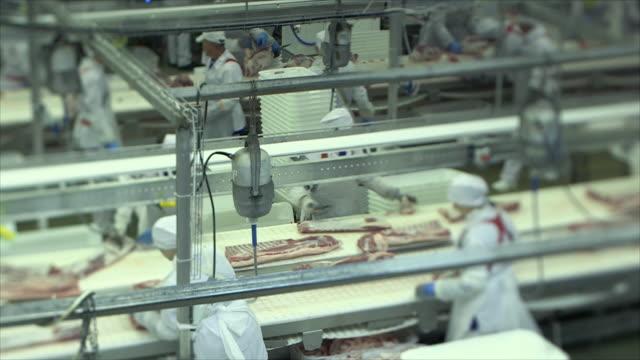 mięso zakład przetwórczy - mielona wołowina filmów i materiałów b-roll